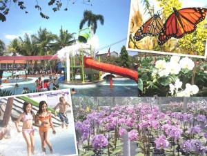 The Adventure Water Park Di Perumahan Galuh Mas Karawang