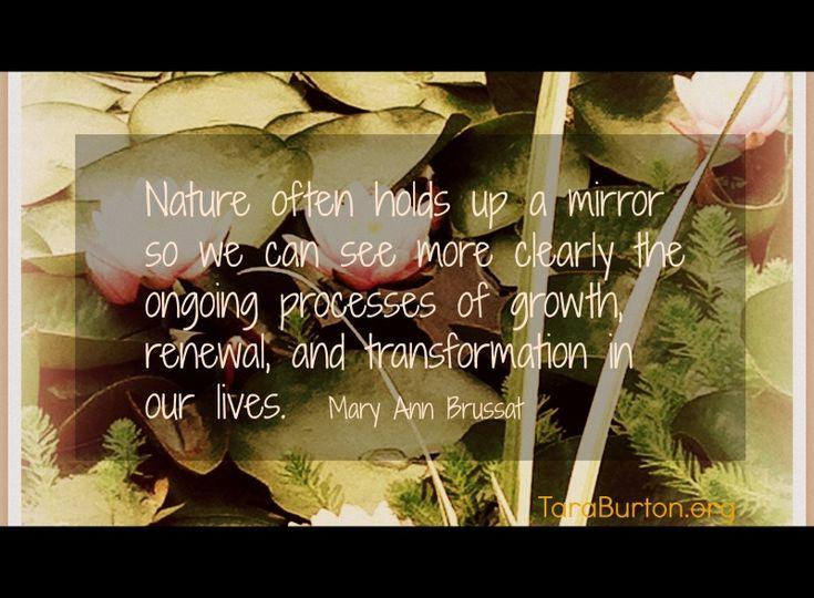 nature as a teacher essayscorer