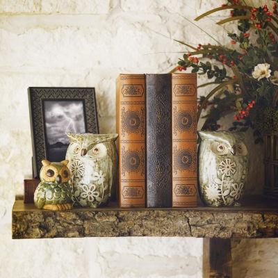 Natural Inspirations- Owls