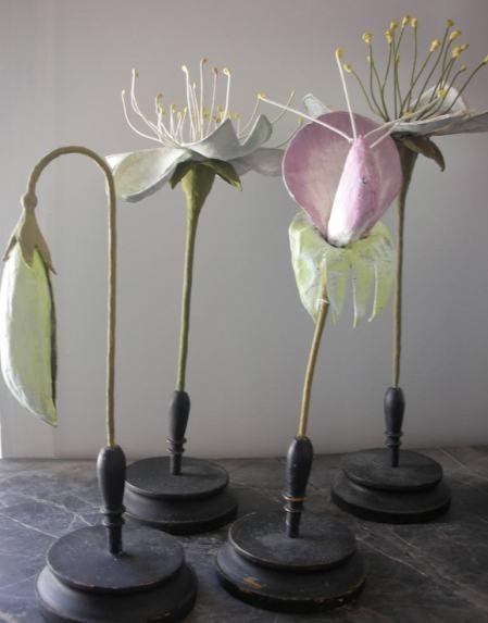 paper mache botanicals
