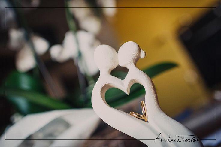 [Storie dai Matrimoni]  Fotografare le fedi.  Mi piace sempre fotografare i particolari del matrimonio.  Ne ho già parlato.  Le fedi sono un qualcosa di più di un particolare. Sono il simbolo del matrimonio.  E vanno fotografate prima che vengano utilizzate.  A volte ci si ingegna per trovare un angolazione  per trovare una composizione particolare.  A volte gli sposi ti preparano il set...come nel caso di VeronicaAlessandro.  Andrea Tarlati-fotografo di matrimoni http://ift.tt/2c10Lqj…