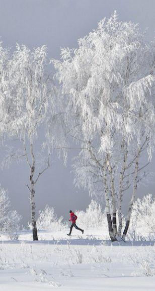 *Winter run.....: