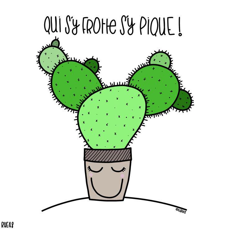 rue48 - Qui s'y frotte, s'y Pique ! instagram : @rue.48