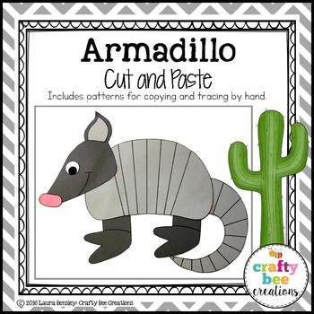 13 Best Armadillo Crafts Images On Pinterest Animal