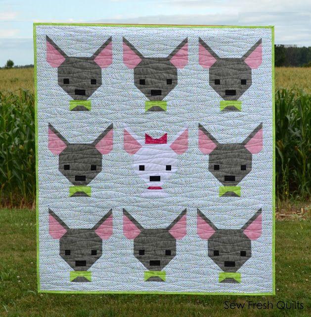 Ay, Chihuahua!!! (Sew Fresh Quilts)