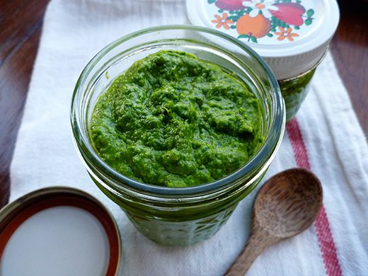 Nasturtium pesto. A great use for those wonderful nasturtium leaves! The plant's mustard oils give a spicy kick to this unusual treat.
