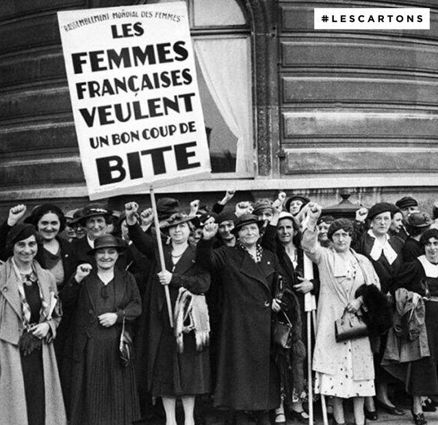 Les femmes française veulent un bon coup de bite. #LESCARTONS