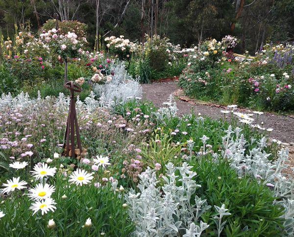 Plain Cottage Garden Ideas Australia A With Design