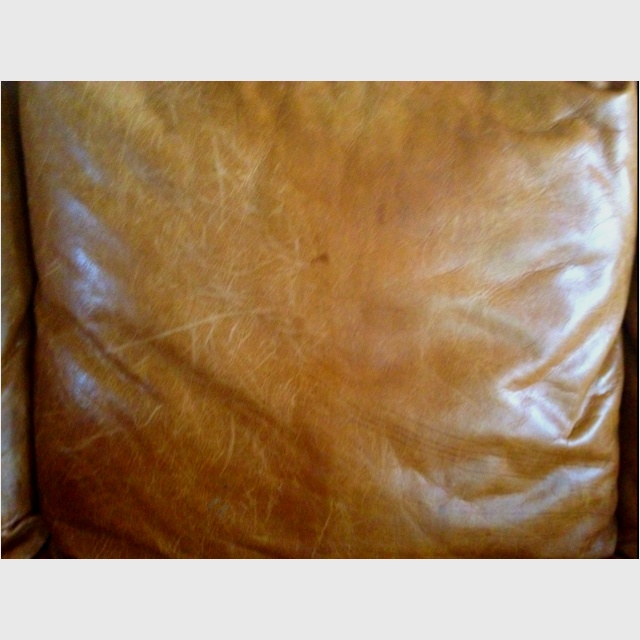 Pledge to take out cratches ad condition leather furniture LEFT - untreated/scratched RIGhT - treated