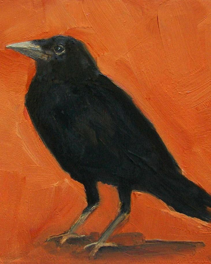 orange crow