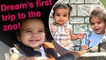 Proud papa! Rob Kardashian shares sweet photos of daughter Dream's first visit to the zoo... and her hangout with ...