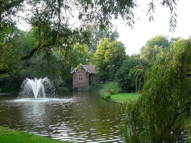 Sarphatipark Amsterdam by jankie, via Flickr  The place where I got engaged...