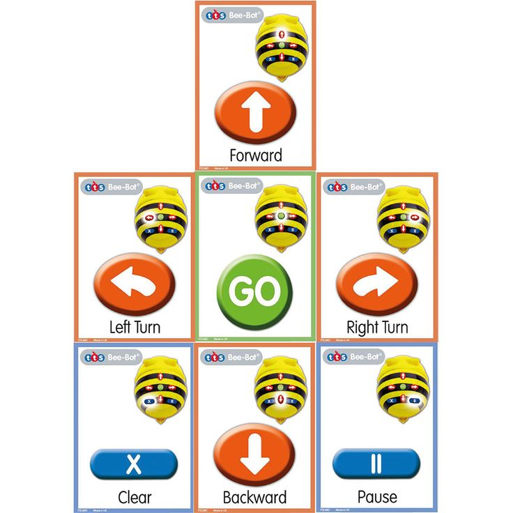 Help pupils to organise the route sequence with this pack of durable sequence cards.