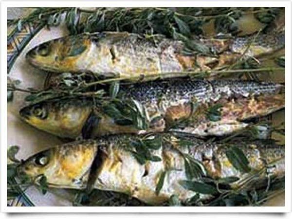 """SA MERCA di Oristano - Sa Merca è un piatto tipico della cucina sarda e specificatamente di quella di Oristano e del nuorese; in quest'ultima, però, pur avendo lo stesso, nome, si differenzia per i suoi ingredienti. Nell'oristanese si tratta di un piatto a base di muggine che viene lessato ed avvolto in un'erba palustre chiamata """"zibba"""" o """"salicornia"""", dopo di che viene asciugato e salato con un procedimento antico e tradizionale che permette alla pietanza di conservarsi per alcuni giorni…"""