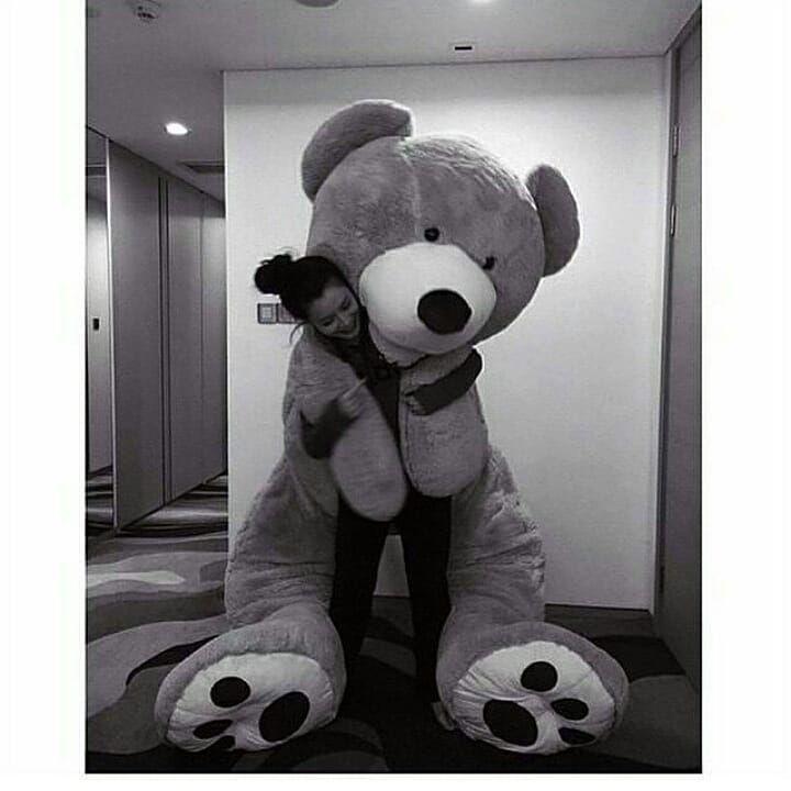 Pin By Manel م ــڼ ــ اڸ On Bears دباديب Teddy Bear Pictures Giant Teddy Bear Teddy Bear Girl