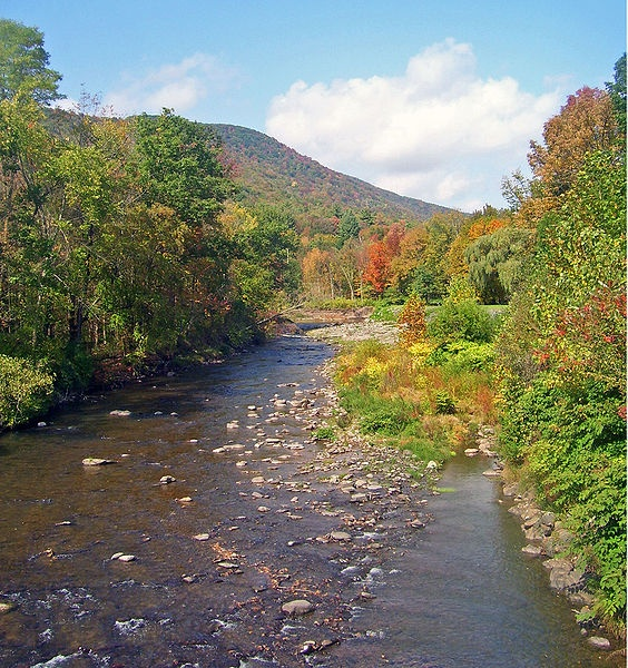 33 best catskills images on pinterest emerson holiday for Hudson river fishing spots