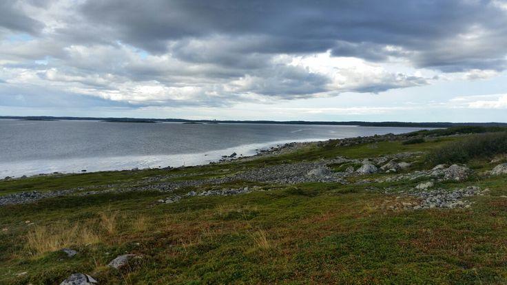 Белое море. Заяцкий остров.