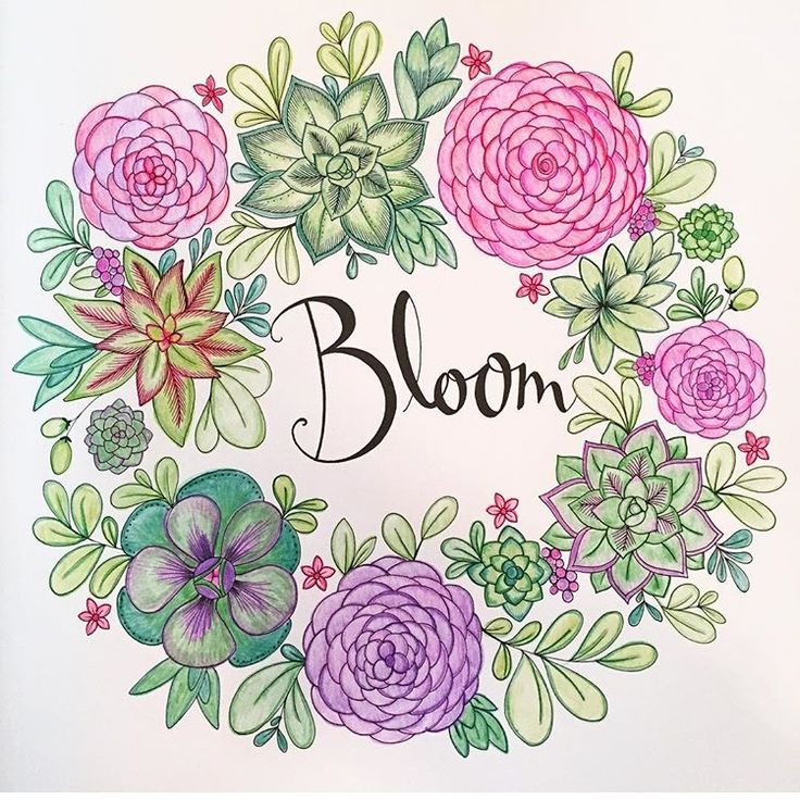36 Best Coloring Joyous Blooms To Color Images On