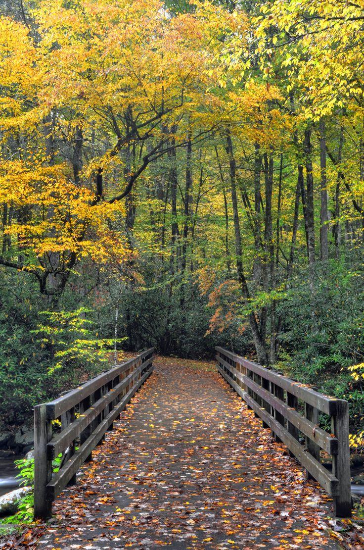 Kephart Prong Trailhead in the Great Smoky Mountains National Park, near Bryson City, North Carolina