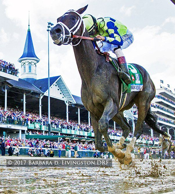Always Dreaming and John Velazquez win the 2017 Kentucky Derby