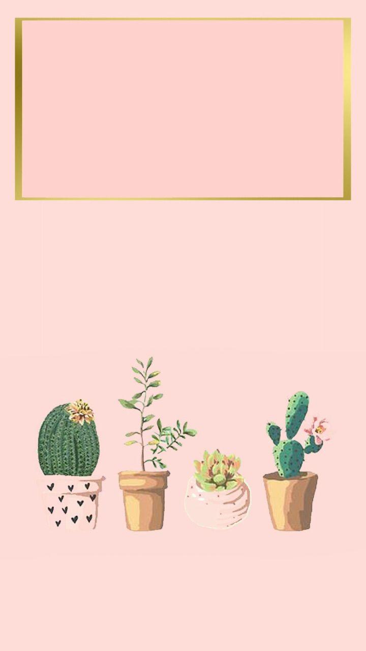 iPhone wallpaper, iPhone background, succulent, cactus