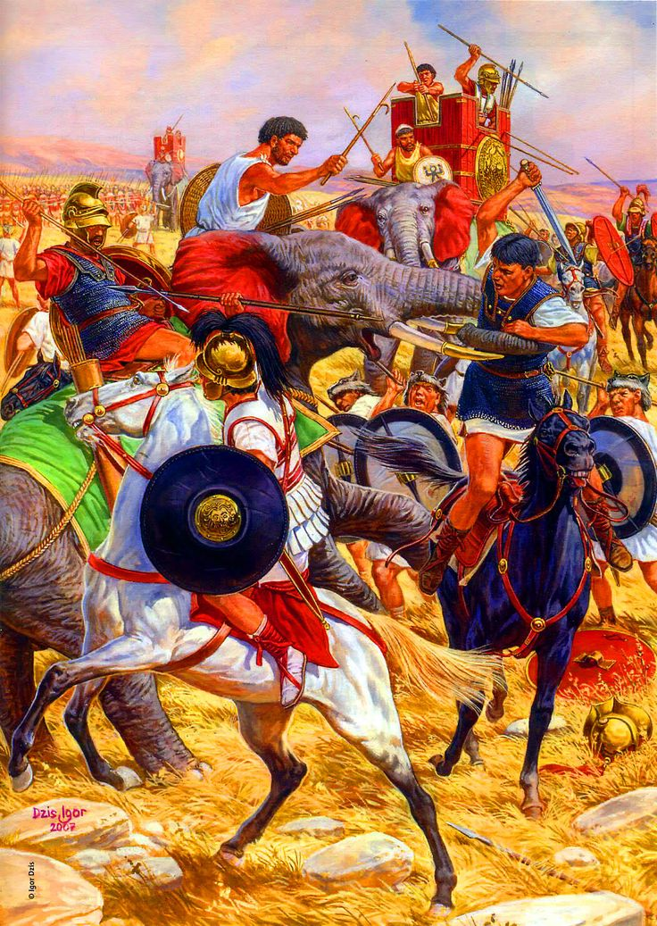 a history of punic wars First punic war, 264-241 bc, long and costly struggle between rome and  carthage that ended with victory for rome.