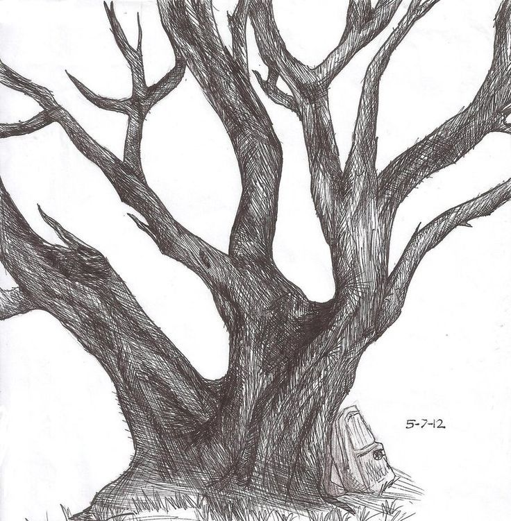 56 best how to draw realistic trees plants bushes and for Best tree drawing