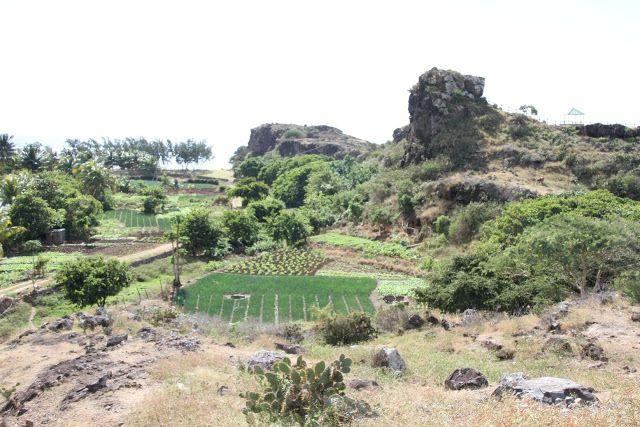Rodrigues: Le potager de l'Ile ou le jardin miraculeux! |    Rodrigues,synonymede dépaysement total!   Aujourd'hui, nous partons découvrir des paysages ...