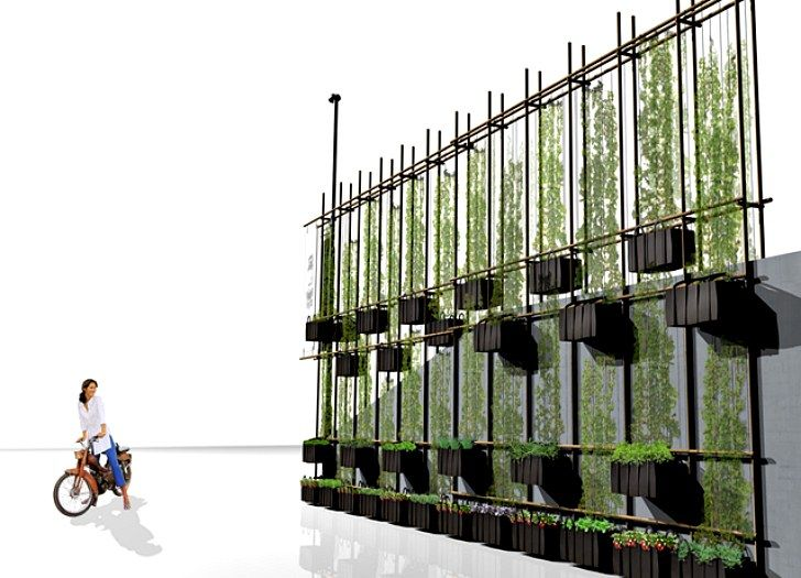 Climbing Green Wall Crafted From Bamboo Scaffolding & Hanging Bags in Norway Green Wall-MMW – Inhabitat - Sustainable Design Innovation, Eco Architecture, Green Building