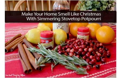 How To Make Holiday Spice Simmering Stovetop Potpourri Recipe ...