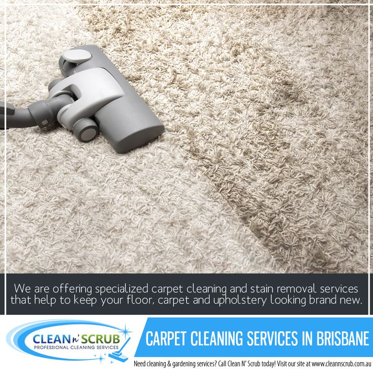 We are offering specialized carpet cleaning and stain removal services that help to keep your floor, carpet and upholstery looking brand new.  Visit our website at www.CleanNScrub.com.au to view our services.  You can book a FREE quote for our services by sending us an email to booking@cleannscrub.com.au or contact us on Skype CLEANNSCRUB or phone (07) 3040 3003.  #cleaningcompany #cleannscrub #brisbane #clean #bondcleaning #gardening #carpetcleaning #pestcontrol #carpetcleaningservice