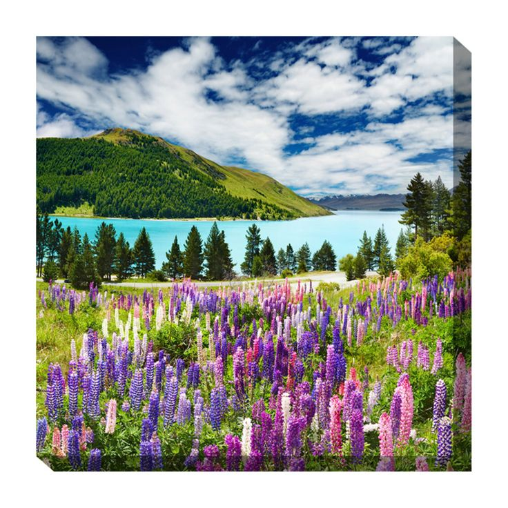 West of the Wind Lupines and Lake Outdoor Canvas Art - 24 x 24 in. - 79031-24