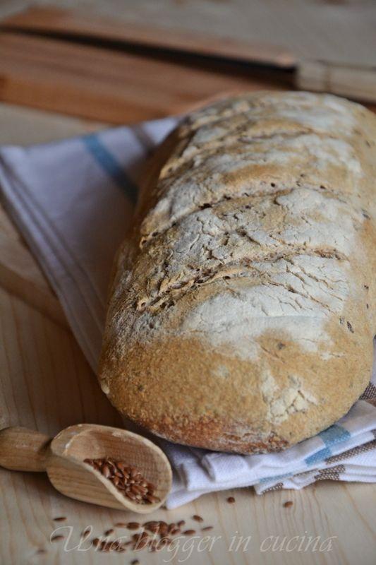Pane integrale ai semi di lino (1)