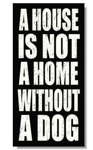 My favorite dog quote!