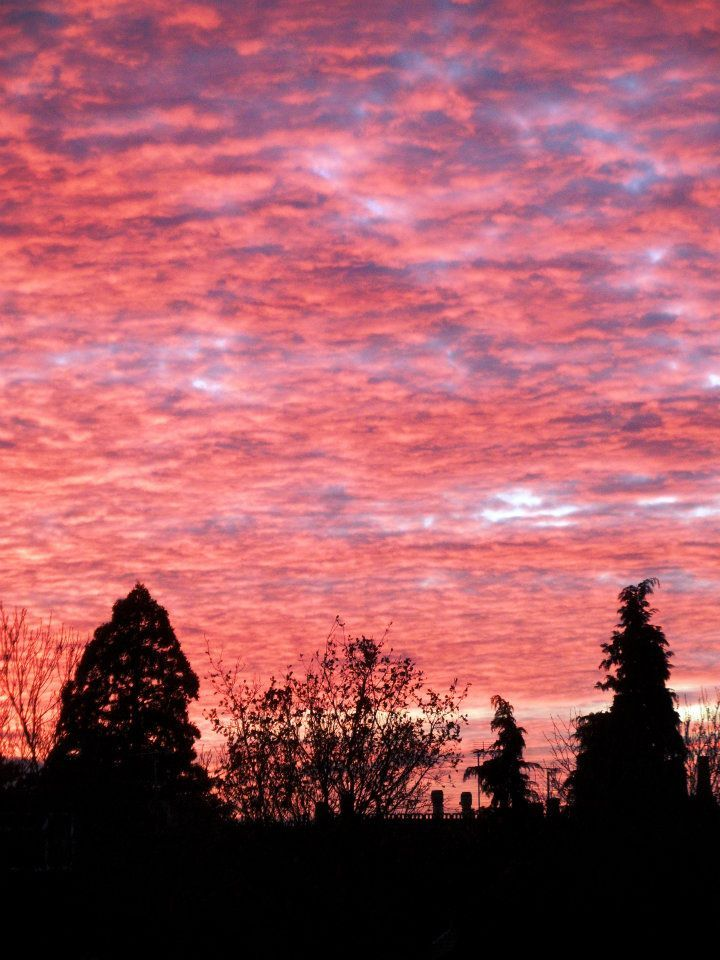Pink sky at night... shepherds delight