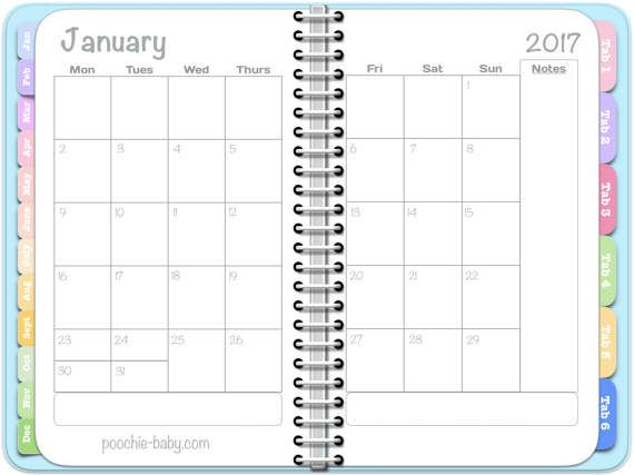 81 best Daily Diary images on Pinterest Bullet, Countertops and - daily diary template