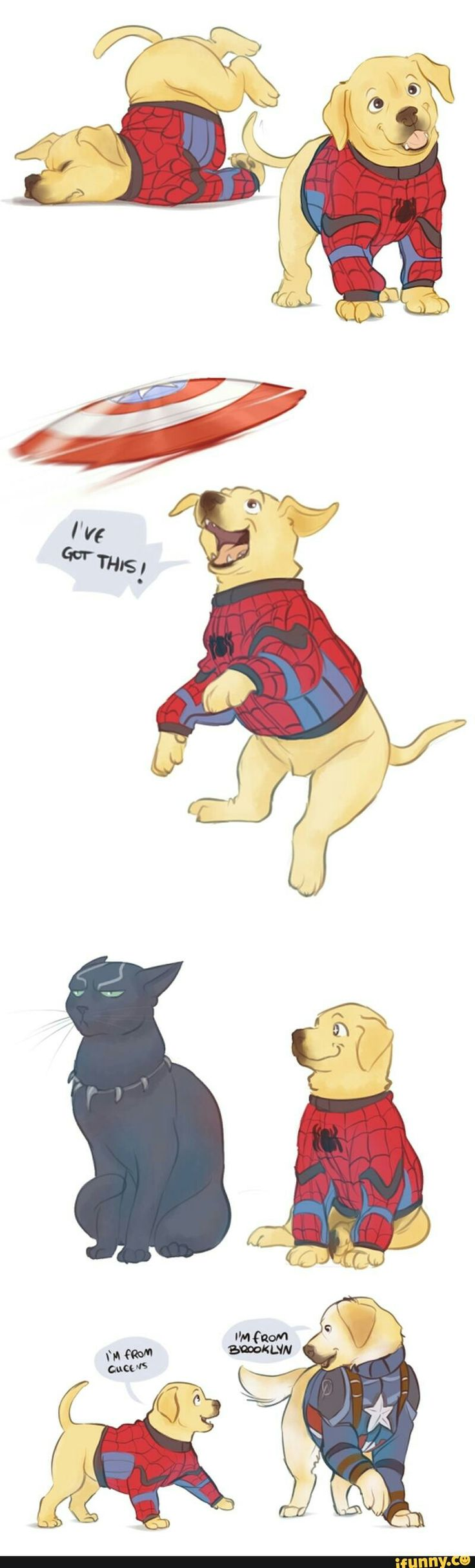 I don't think Golden Retriever suits Peter. Maybe something else...<<he's not a retriever, he's a lab. And it fits