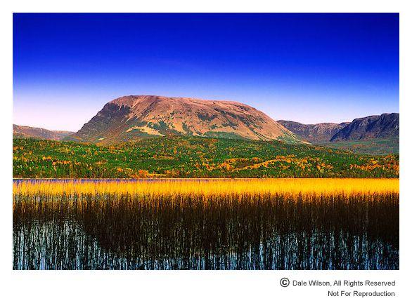 Newfoundland - Gros Morne National Park