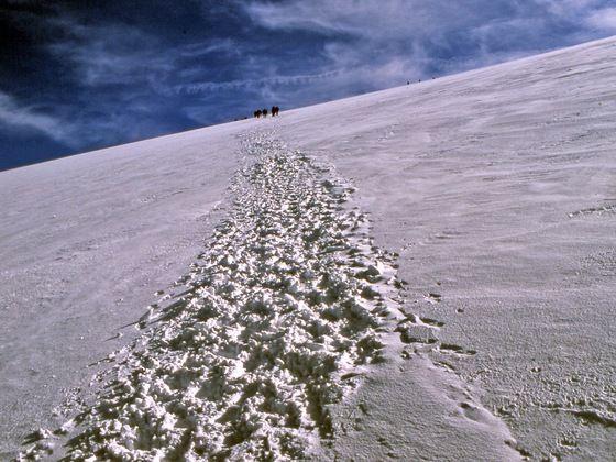 Una #twitpic bianca e bellissima dal Monte Rosa #alpi