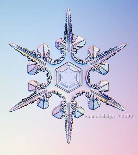 Snowflake photo by Pam Eveleigh
