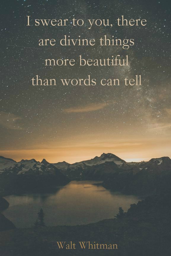 """there are divine things more beautiful than words can tell"" -Walt Whitman"