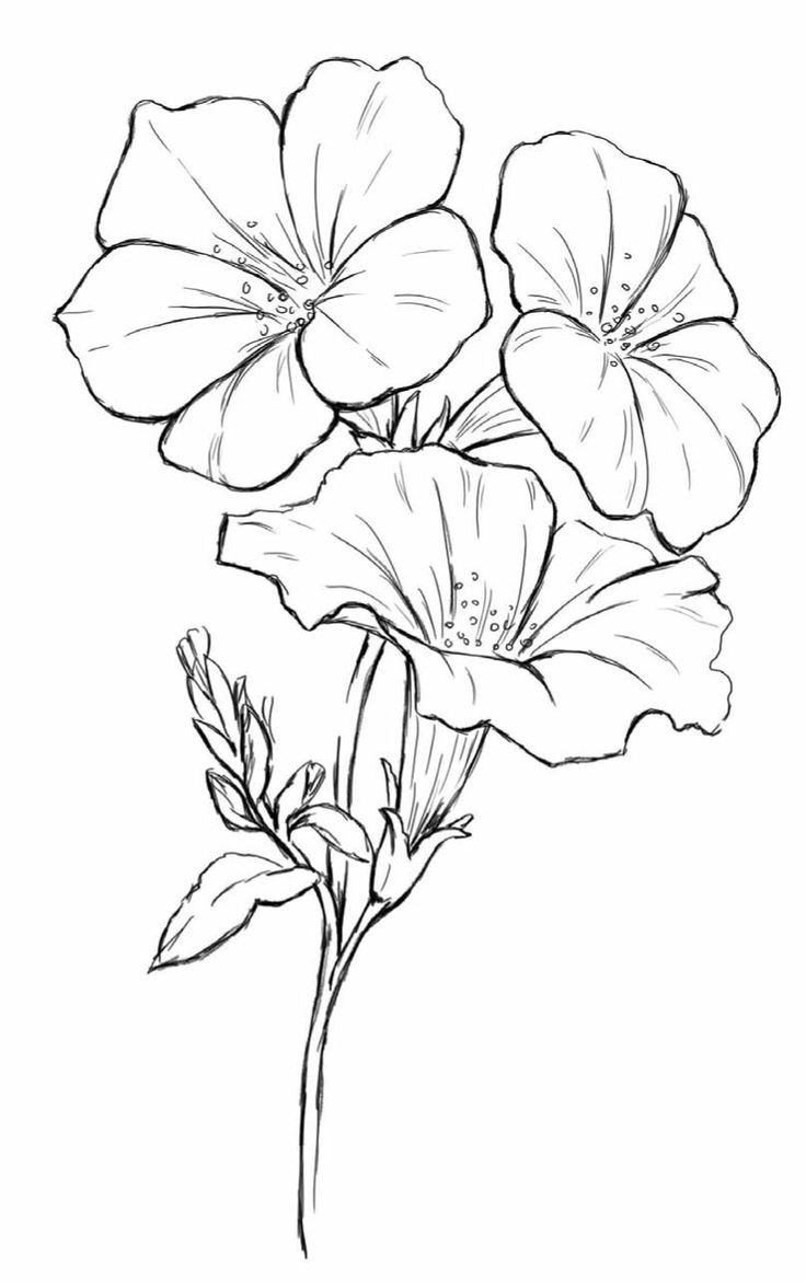 Find this Pin and more on coloriage nature by marjo1001