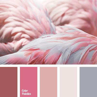 brown and pink, brown gray, color of flamingo, color of flamingo feathers, designer shades of roses, gentle shades of pink, gentle shades of rose, gray and shades of brown, gray-brown, pink and brown, pink color with a shade of brown, red-pink, selection of color for design, shades of pink.