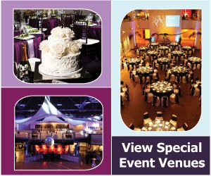 Weddings and events.  If I ever need to book a venue...good options here.