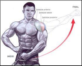 Exercícios Para ombros – Levantamento lateral com Halteres Execução 1 - Na posição em pé ereta, segure os halters com os b...