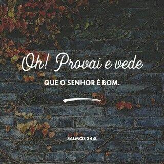 Procure descobrir, por você mesmo, como o Senhor Deus é bom. Feliz aquele que encontra segurança nele! Salmos 34:8