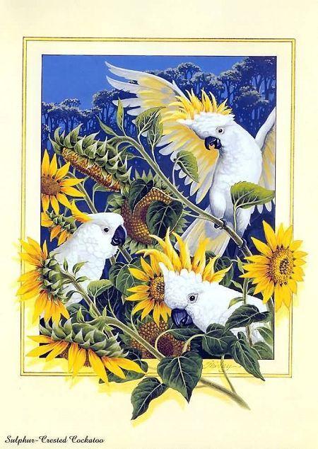 Материал по изобразительному искусству (ИЗО) по теме: Красивые птицы в китайских пейзажах | скачать бесплатно | Социальная сеть работников образования