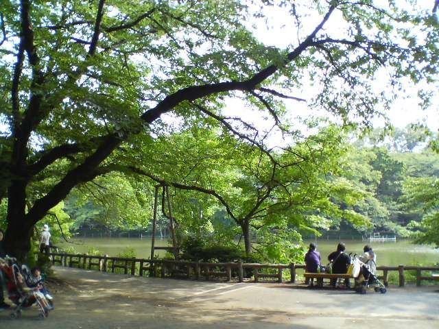 時にはまったり散歩でもして、空気の美味しいところでデートがしたい。都会の喧騒から離れて公園で風にあたりながら過ごしたい。そう考える東京在住の方も多いのではないでしょうか。今回は、そんな方たち向けに東京都内でまったりできる人気の公園を5選形式でご紹介します。