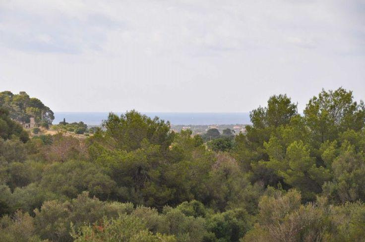 Fincas Rusticas en Venta en SANT LLORENS, MALLORCA, Spain