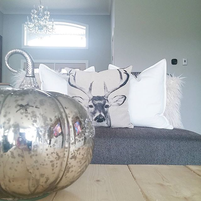 Throw Pillows Homesense : 17 Best images about My Homesense on Pinterest Wire baskets, Chalkboard labels and Christmas ...